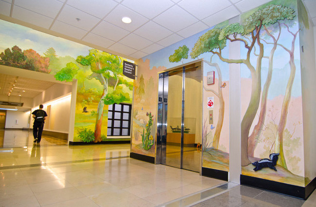 SafeWalls® Permanent Architectural Antimicrobial Commercial Wallcoverings Now Available and Custom Produced Nationwide